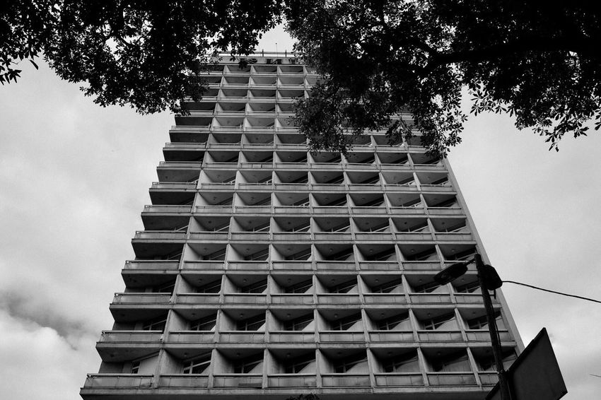 Black And White B&w Architecture Built Structure Sky Tree Building Exterior Low Angle View Plant Building No People City