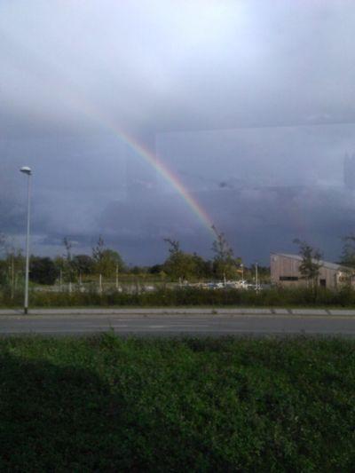 Rainbow Cloud - Sky Sky Plant Beauty In Nature Double Rainbow Environment