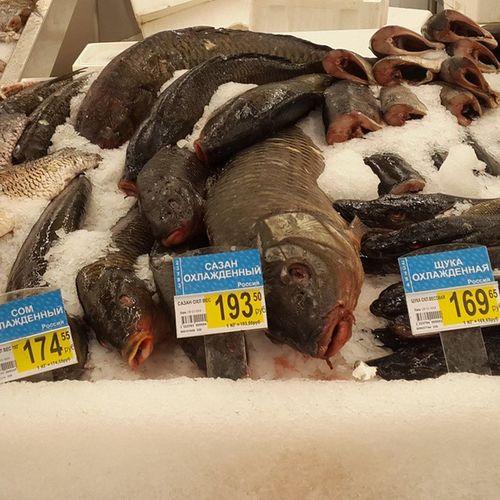 Сёмга теперь по 800, а вот и дешёвая отечественная рыбка