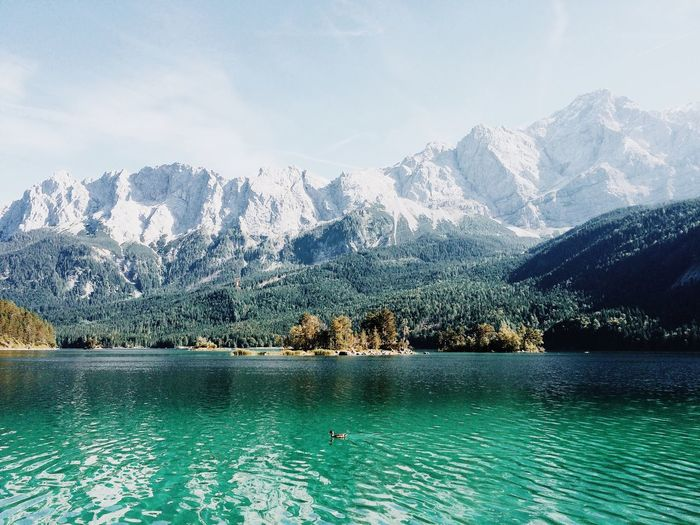 - Eibsee - Back to the nature 🌲 Can you see the little duck on the lake? Lake Lake View Water Island EyeEm Best Edits Nature EyeEm Nature Lover Zugspitze Mountains Wanderlust