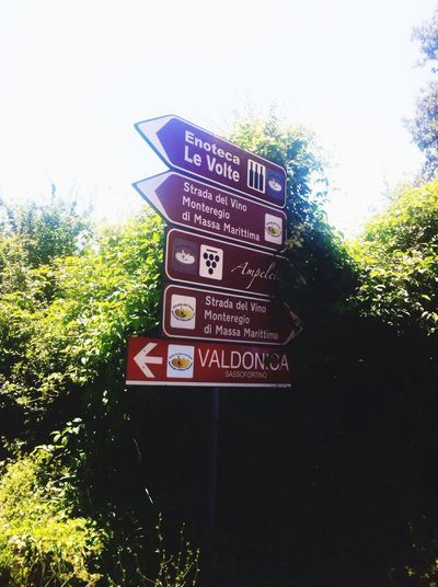 Tuscany Directional Sign Wine Roads Decisions Hello World Italy🇮🇹 Italuan Traveling Strada Del Vino