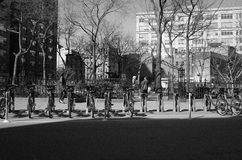 Jackson Square, West Village, April 2014 28mm Architecture Bare Tree Branch Citibike City Life City Street Day Jackson Square Manhattan Nature New York City Outdoors Ricoh Gr Tree Westvillage Streetphoto_bw Streetphotography Street Photography