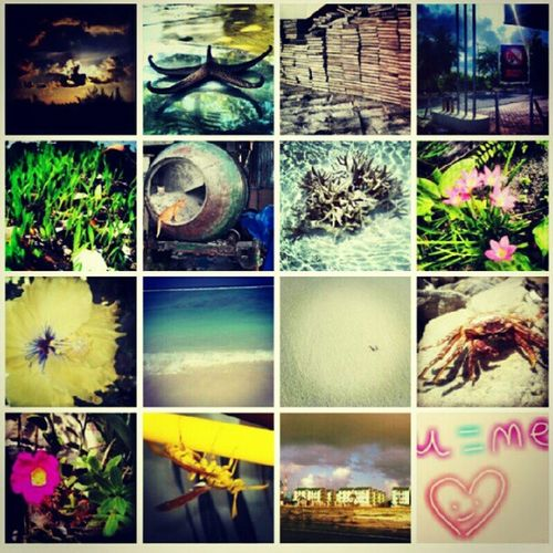 Some of my Photos in Instagram Gridview