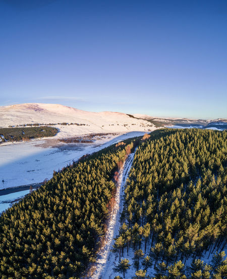 Cairngorms National Park, Braemar Aerial Shot Drone  Highland Low Angle View Pine Forest Scotland Aerial View Beauty In Nature Blue Clear Sky Droneshot Landscape Mountain No People Outdoors Pine Tree Scenics Sky Snow Snowcapped Mountain Tranquil Scene Winter Wonderland