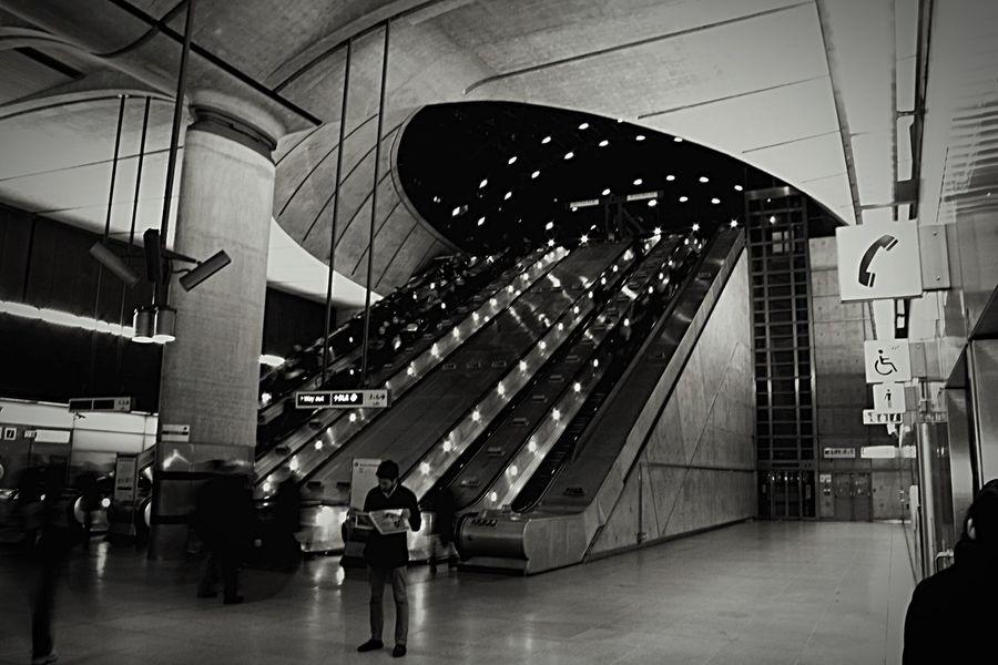 AIDA - Dreamer London Aidacruises Aida Architecture Indoors  Walking Built Structure Women Staircase Men