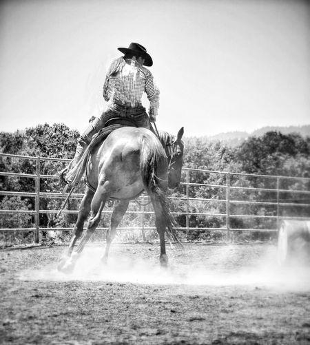 Horse Horseback Riding Domestic Animals Animal Mammal Animal Themes Horse Life Enjoying Life Ranch Life 2017 Eyeem Awards The Portraitist - 2017 EyeEm Awards Random Acts Of Photography Horse Legs Breathing Space Business Stories