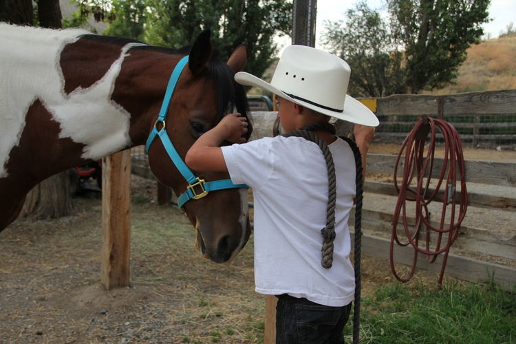 Side View Of Boy Petting Horse