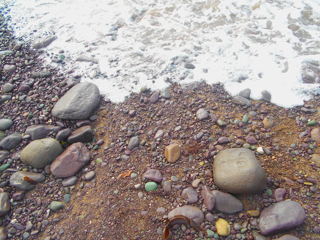 Abundance Backgrounds Beach Beauty In Nature Close-up Day Elevated View Full Frame Natural Pattern Nature No People Outdoors Pebble Pebble Beach Rock Rock - Object Scenics Seashell Shell Shore Stone Stone - Object Tranquil Scene Tranquility Water