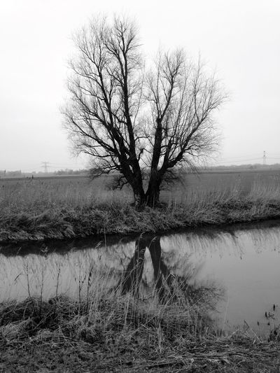 Hugging A Tree Trees Blackandwhite Taking Photos Water Reflections Nature Landscape_Collection Melancholic Landscapes Landscapes EyeEm Best Shots