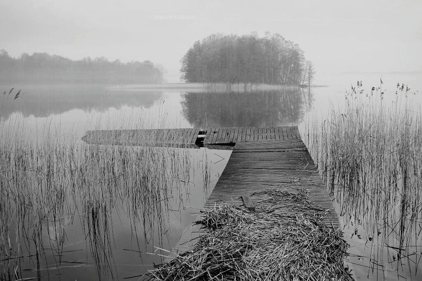 Blackandwhite Kochamy.warmie Poland Nature Monochrome Naturelovers Warmia Kochamy_warmie Natural Beauty Black&white
