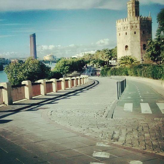 Sevilla, una ciudad para disfrutar en bici!! ISevilla Tourism Torredeloro Seville