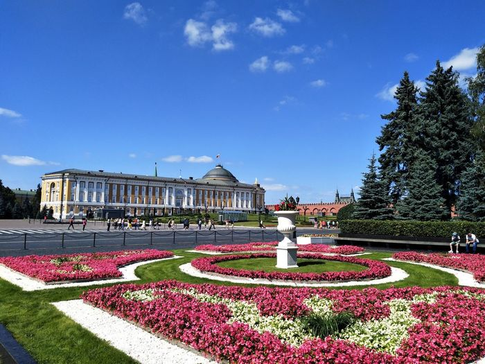 Statehouse of Kremlin Palace Flower Blue Tree Sky Architecture Plant Formal Garden Flowerbed