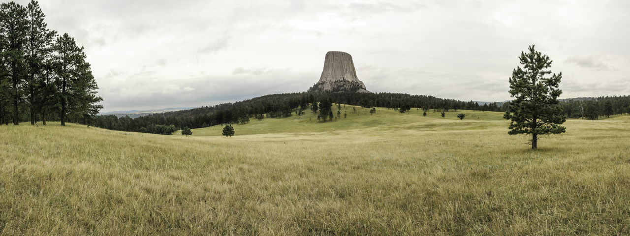 Beautiful Nature Devil's Tower Devil's Tower National Monument Tree Wyoming Wyoming Landscape Beauty In Nature Close Encounters Of The Third Kind Day Field Grass Growth Landscape Movıe Nature No People Outdoors Scenics Sky Tranquility Tree