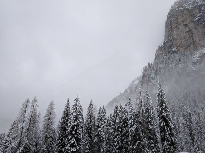 Line in the clouds is the first part of the Marmolada cable lift // Winter Cold Temperature Nature Weather Low Angle View Beauty In Nature Snow Tranquility Day Tranquil Scene Scenics Sky Mountain Outdoors No People Landscape Tree Fog Google Pixel F/2.0 via Fotofall