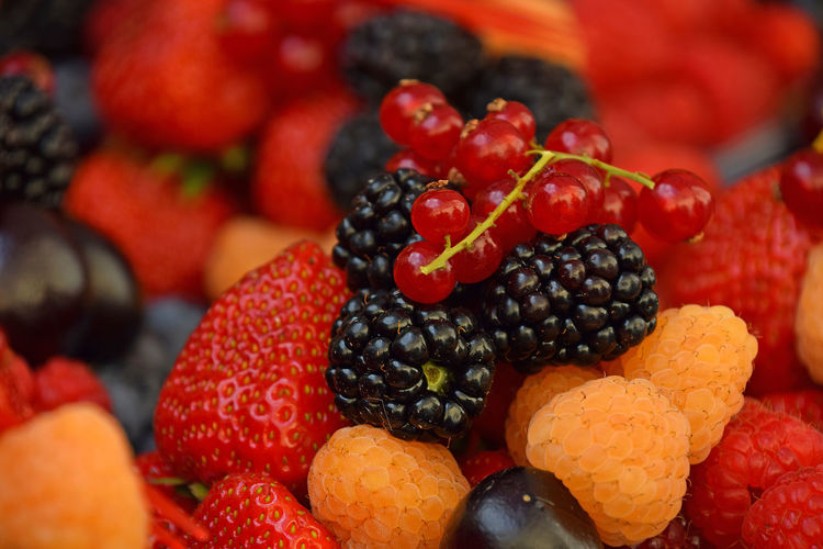 Mix of sweet organic berry fruit, close up Berries Freshness Vitamins Berries Collection Berry Berry Fruit Berry Fruits Close-up Food Food And Drink Fresh Freshness Fruit Fruits Harvest Healthy Eating Large Group Of Objects Organic Red Ripe Season  Strawberry