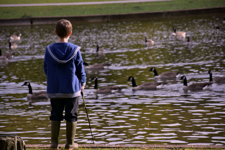 Animal Wildlife Animals In The Wild Beauty In Nature Child Day Fishing Lake Large Group Of Animals Nature One Person Outdoors Real People Rear View Selective Focus Standing Water Wellington Boots