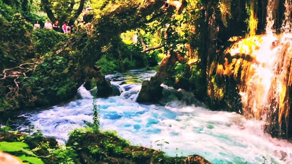 Yasam Tatil şelalesi Manvgat Tree Nature Beauty In Nature Water Motion Outdoors Waterfall River Forest Sunlight Scenics Freshness Power In Nature Day