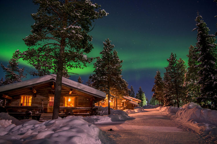 Aurora Aurora Borealis Finland Green Green Color Lapland Nature Nikon Nikon D3300 Northern Lights Pine Winter Beauty In Nature Cottage Erasmus Iamnikon Nikonphotography Outdoors Polar Light Saariselkå Winter Wonderland
