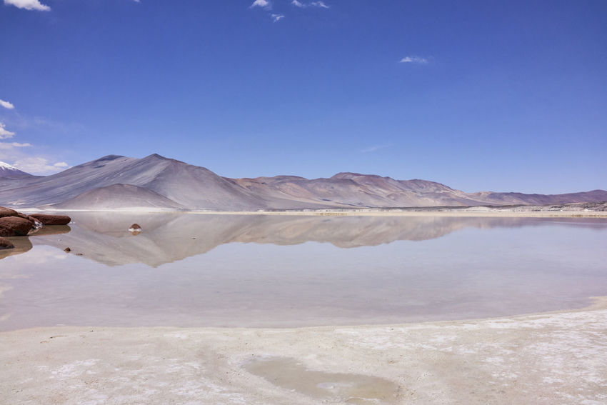 The Miniques and Lake Miscanti in Antofagasta Chile. A panorama of mirror lakes and a lovely blue sky. Atacama Desert Chile Miniques Nature Panorama Beauty In Nature Cloudless Blue Sky Landscape Mirror Lake Mirror Lakes Miscanti No People Scenics South America