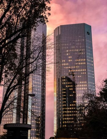 Frankfurt Frame It! Eye Em Selects Sunset_collection Afterglow Deutsche Bank Building Exterior Architecture Built Structure Sky Building Sunset Nature No People Tree City Outdoors Cloud - Sky