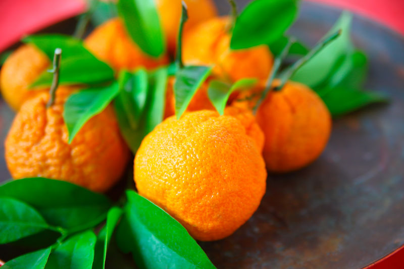 Citrus fruit with leaves for Chinese New Year Green Color Indoors  Day No People Nature Healthy Eating Orange Color Citrus Fruit Food Close-up Freshness Foliage Leaves Lucky Symbols Chinese New Year Room For Text Copy Space Tangerines Metal Pan Fresh Fruit Textures Natural Light Harvest