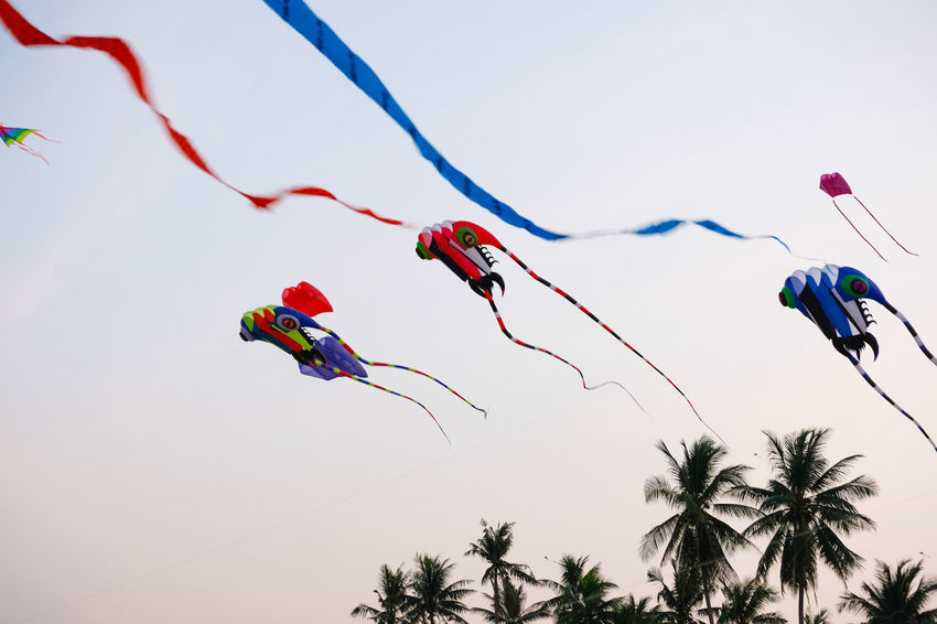 SAM-RAT BEACH - February 10, 2018: Thailand International Kite Festival on February 5, 2018 in Sam-rat beach, Suratthani province Thailand. SAM-RAT BEACH - February 10, 2018: Thailand International Kite Festival On February 5, 2018 In Sam-rat Beach, Suratthani Province Thailand. Beauty In Nature Celebration Day Hanging Kite - Toy Low Angle View Multi Colored Nature No People Outdoors Sky Tree