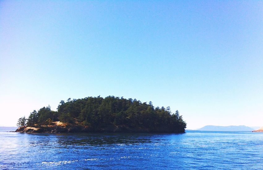 San Juan Islands, Washington Nature On Your Doorstep EyeEm Nature Lover Island Blue Summer Memories 🌄 Yeah Springtime! Share Your Adventure Summer Views EyeEm x WhiteWall: Landscapes Summer View Shot On IPhone Water Land The Essence Of Summer