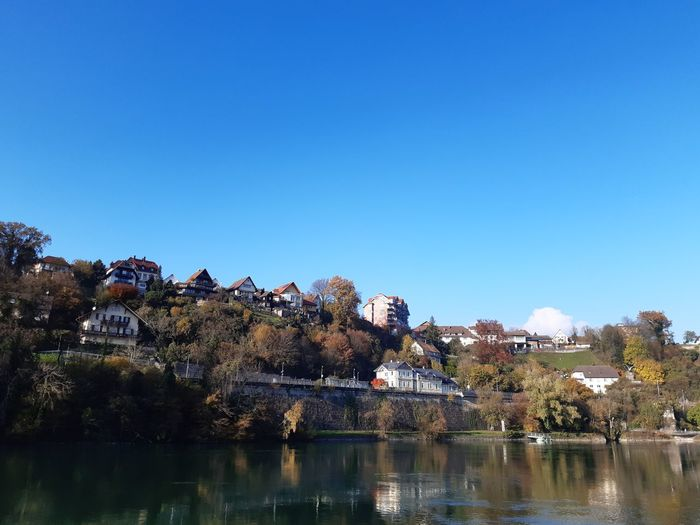 Trees and houses by river against clear blue sky