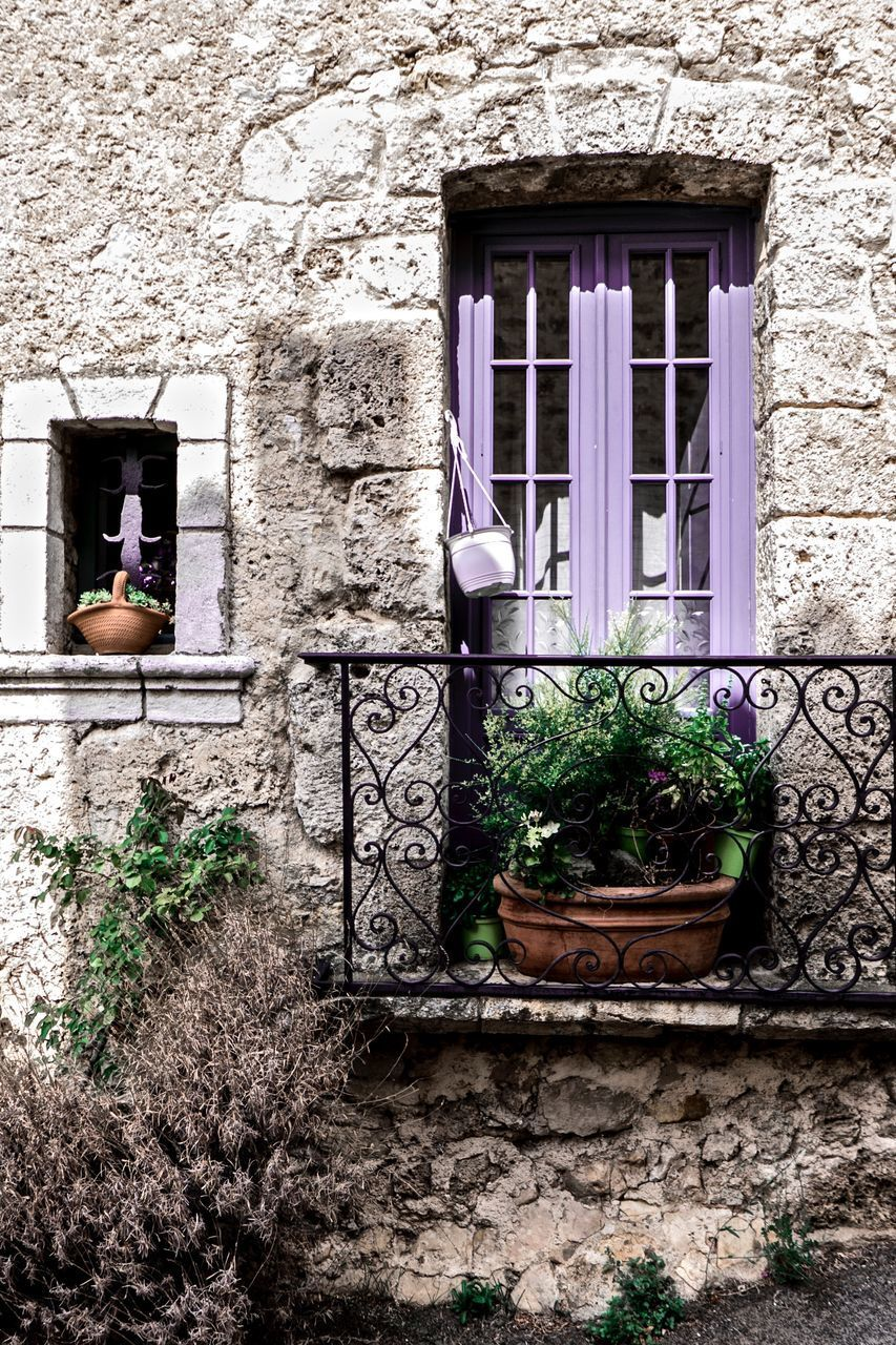 built structure, architecture, building exterior, window, building, plant, house, potted plant, residential district, no people, day, growth, wall - building feature, door, entrance, outdoors, flower, nature, flowering plant, wall, flower pot, window box, houseplant, window frame
