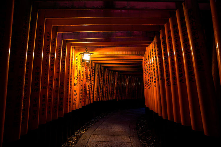 Empty Illuminated Footpath Amidst Torii Gates At Night