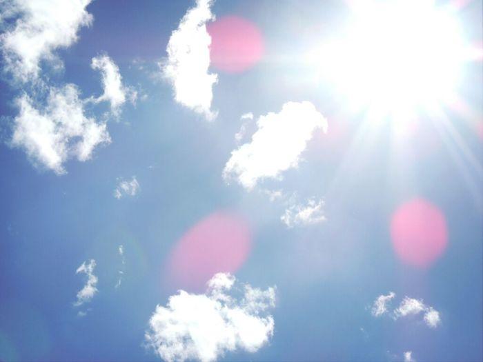 Sun is up! [Nikon P510]