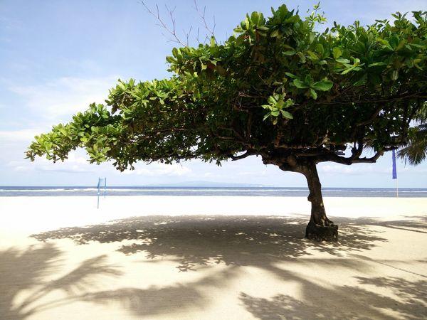还没回金宝前的享受哈哈... Sea Water Nature Beach Wetland Sand Landscape Ecosystem  Outdoors Horizon Over Water Day Sky Eyeme Best Shot No People OPPO OppoFind7a EyeEm Best Shots Bali, Indonesia Discoverbali DiscoverIndonesia EyeEm Gallery Travel Nature Tree