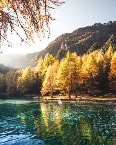 Sit down, take a deep breath and enjoy the beautiful scenery Water Tree Beauty In Nature Tranquility Mountain Scenics - Nature Lake Sky Tranquil Scene Plant Waterfront Nature Reflection Autumn Day No People Non-urban Scene Idyllic Land Outdoors Change Bench Autumn Tree Larch