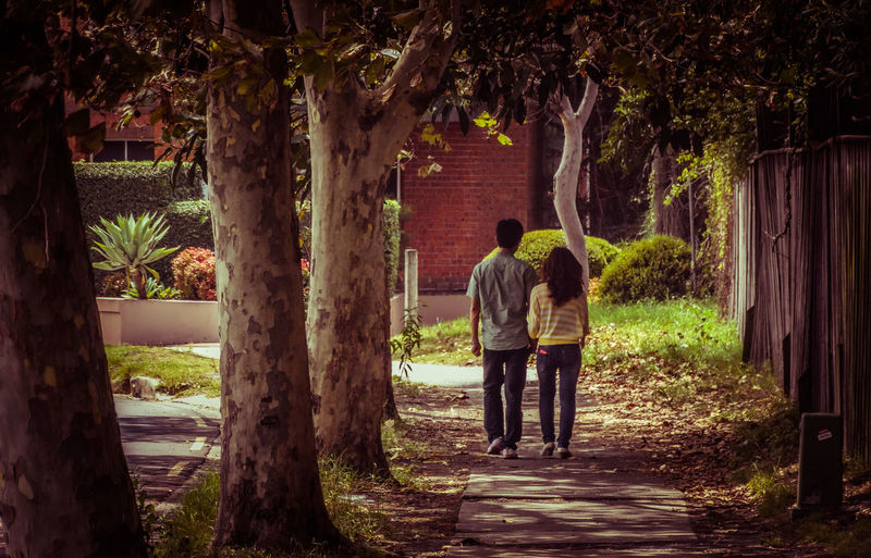 Bonding Casual Clothing Couple - Relationship Dating Friendship Full Length Happiness Heterosexual Couple Lifestyles Love Men Outdoors Real People Rear View The Way Forward Togetherness Tree Two People Women Young Adult Young Women