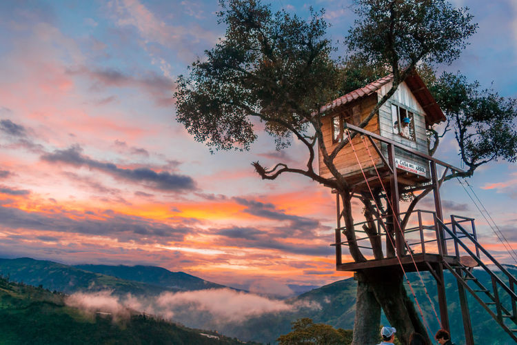 The famous tree house in Baños, Ecuador BañosEcuador Sunset_collection Tree Architecture Baños Beauty In Nature Building Exterior Built Structure Casa Del árbol Cloud - Sky Clouds Day Ecuador Mountain Nature No People Outdoors Relax Scenics Sky Sunset Swing At The End Of The World Tranquil Scene Tree Tree House An Eye For Travel