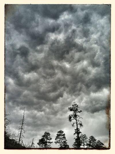 Big Big TingsFi Gwan Photo EyeEm Nature Lover Sky_collection