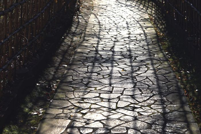 The Way Forward Day No People Nature Outdoors Road Earth Sunset Japan Japan Photography Sunshine Shade Shadow Dreamy
