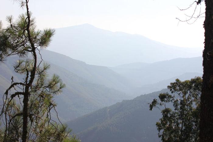 Afterfire Florest Green Landscape Nature Nopeople Paisaje Serradaestrela Shadows Smoke Somesmoke