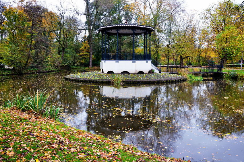 Reflection_collection Reflections In The Water Reflection Holanda Netherlands Fall Beauty Fall Colors Amsterdamcity Otoño Amsterdam Autumn Colors Canals And Waterways National Park
