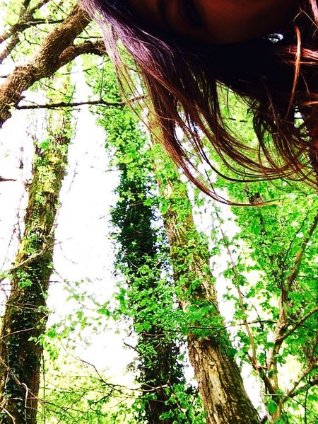 Follow your own nature.. Travelling Nature Trees Selfie Color Portrait Lifestyle Landscape Home Sweet Home