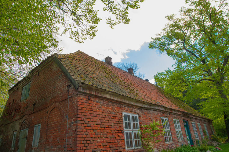 Tree Architecture Built Structure Building Exterior Plant Building Sky Low Angle View Nature Day No People House Wall Brick Outdoors Roof Growth Old Green Color Brick Wall