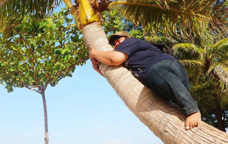 Man sitting on tree trunk against sky