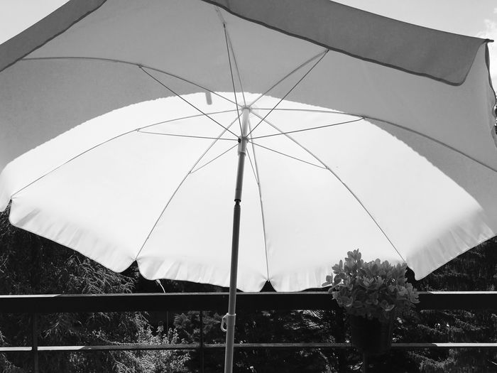 IPhoneography Umbrella Protection Nature Security No People Day Low Angle View