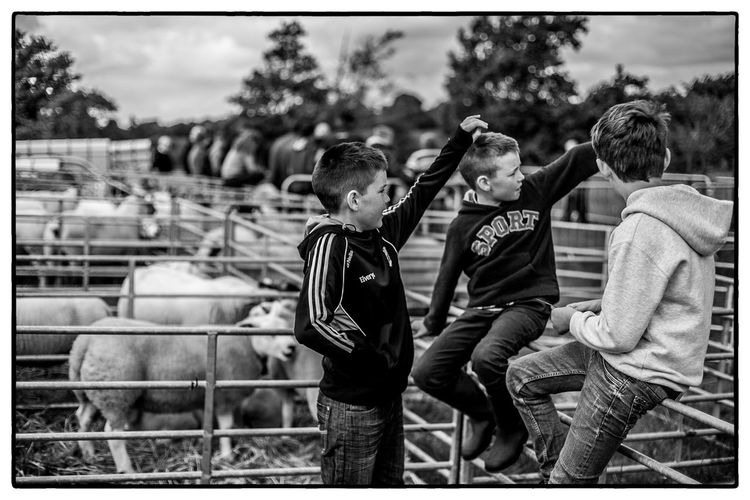 Agricultural show in Swinford, Ireland. August 2017 Ireland Agriculture Boys Childhood Togetherness Focus On Foreground Outdoors Day Elementary Age People