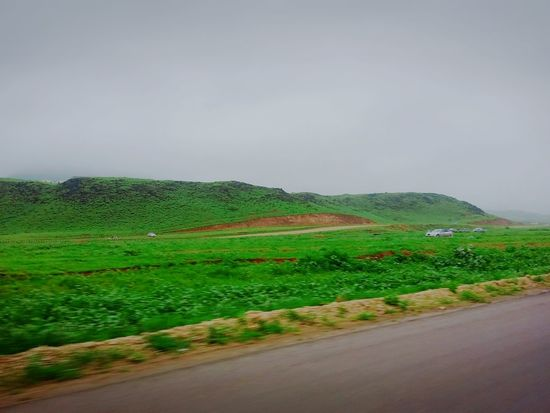 The Culture Of The Holidays Landscape Tranquil Scene Tranquility Green Color Copy Space Scenics Road Solitude Plant Agriculture Nature Beauty In Nature Farm Countryside Rural Scene Growth Outdoors Green Field Crop  First Eyeem Photo Leicaq Salalah 🇴🇲 Dhofar,