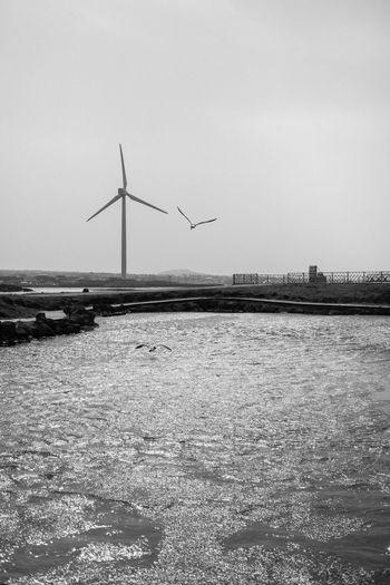 Wind turbines on landscape against sky