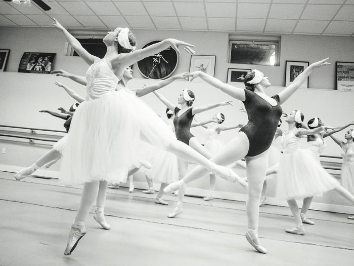The Flock - Ballet Ballet Dancer Dancer Grace Dancing Tutu Elégance Arts Culture And Entertainment Skill  Full Length Flexibility People Archival Performing Arts Event Performance Adults Only Exercising Stage Costume Indoors  Adult Mister Brown Photography Ballerina Dance Pointe Shoes Swan Lake