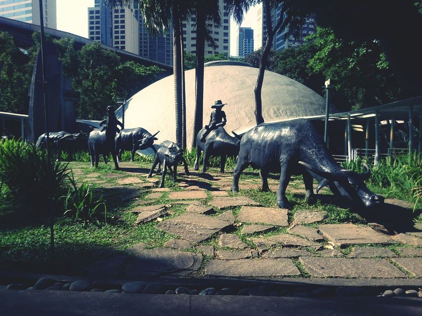 Discover Your City City View  Relaxing My City City Xperiashot Carabao Greenbelt Cityscape Garden