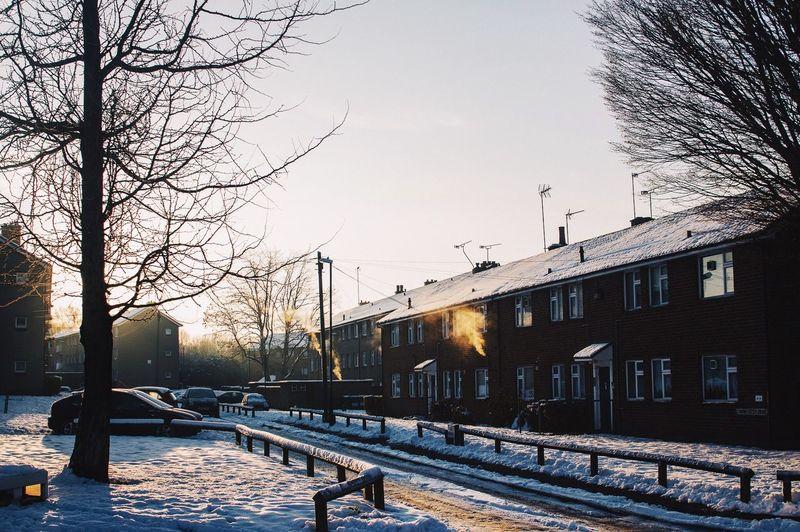 Clad in snow