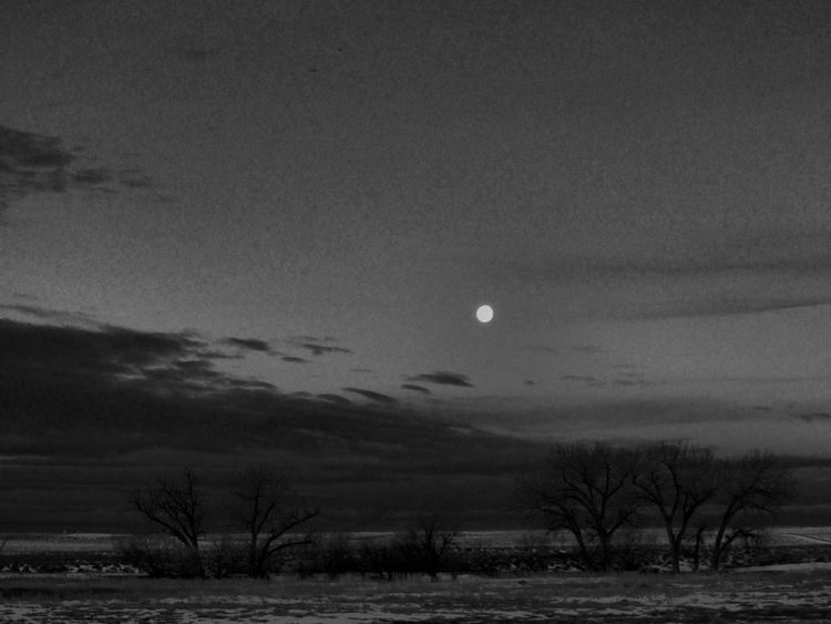 Arid Climate Arid Landscape Atmosphere Barren Black & White Black And White Blackandwhite Dark Horizon Over Land Landscape Majestic Moon Moon Light Moonlight Nature Night Non-urban Scene Outdoors Outside Remote Solitude Tranquil Scene Tranquility Weather